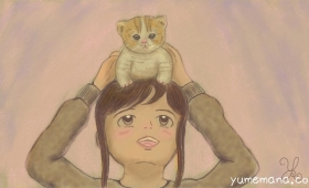 頭乗り猫さん A Kitten on My head